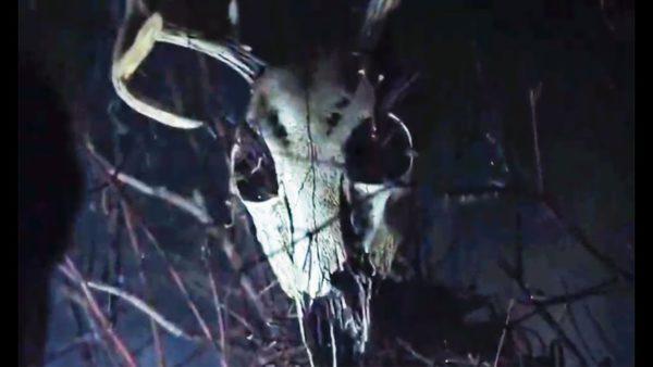 A buck's skeletal head atop a shrine